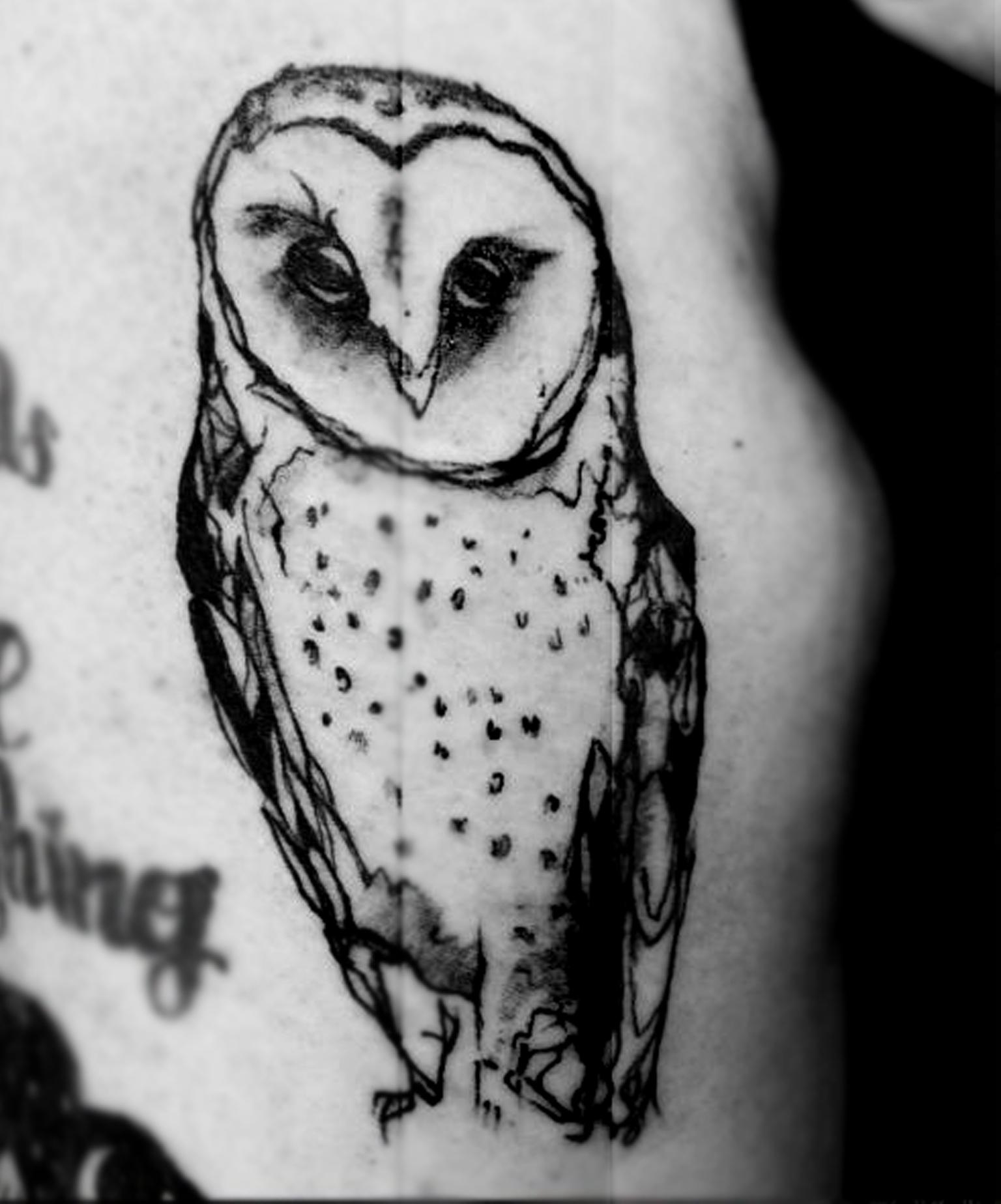 owlsketch1