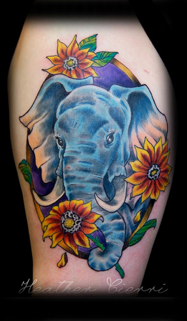 elephantfinal